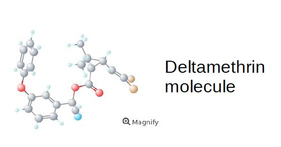 Deltamethrin molecule