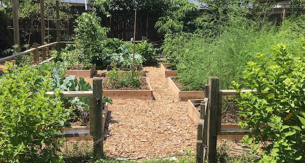 Christiane's garden 2